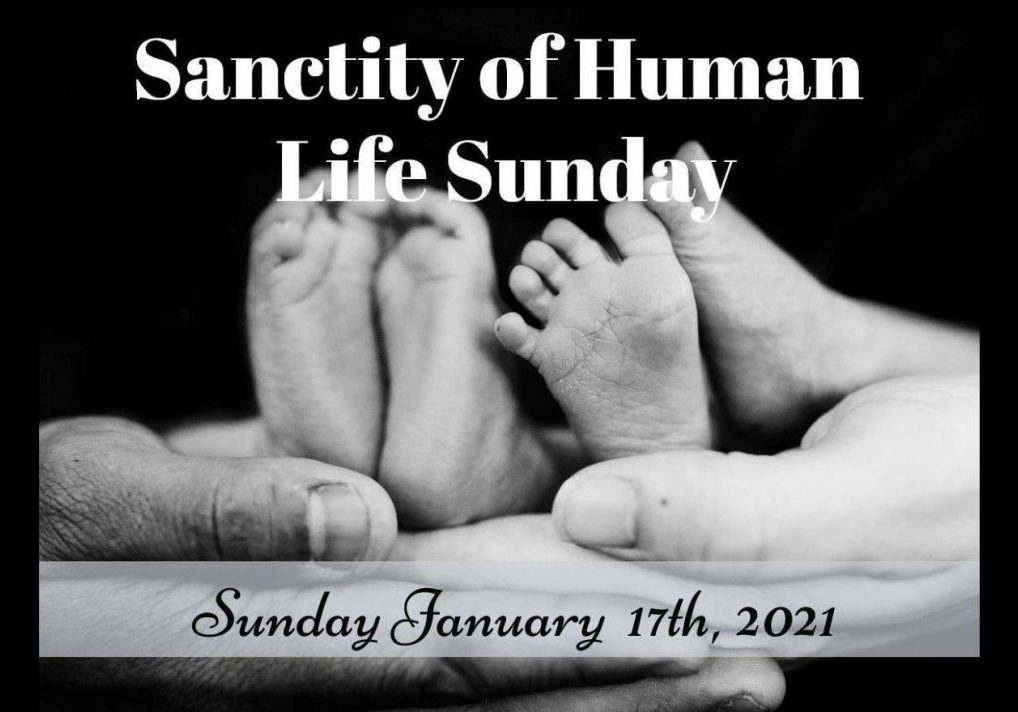 Sanctity of Human Life Thumbnail-page-001 (1)